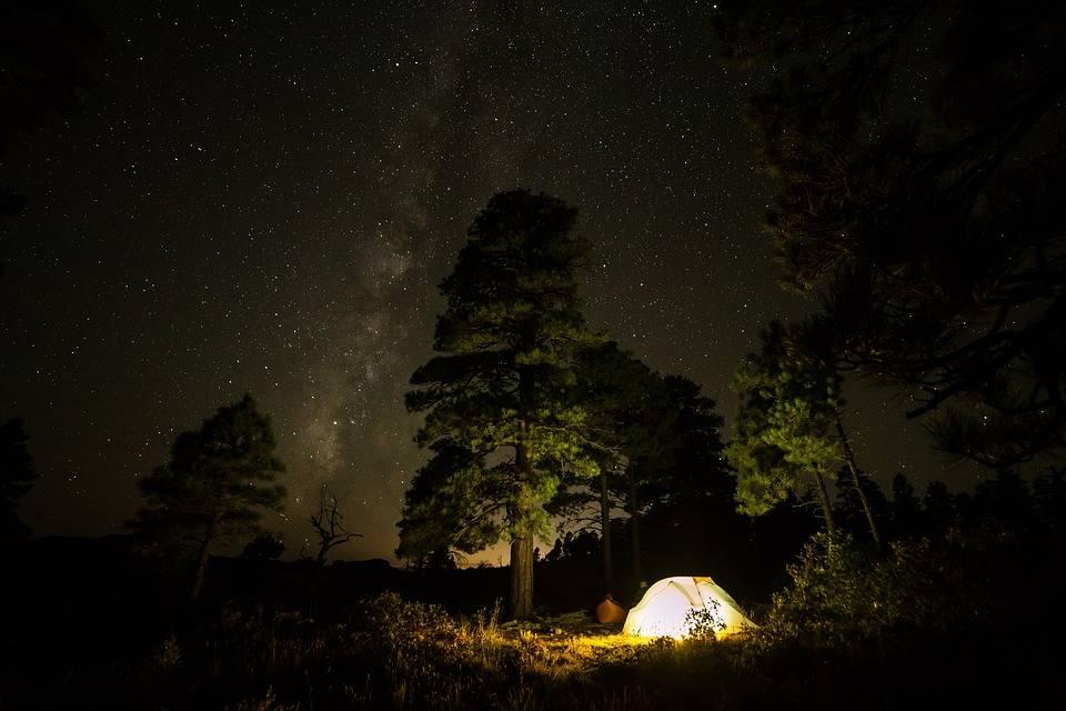 Obóz: noc w lesie