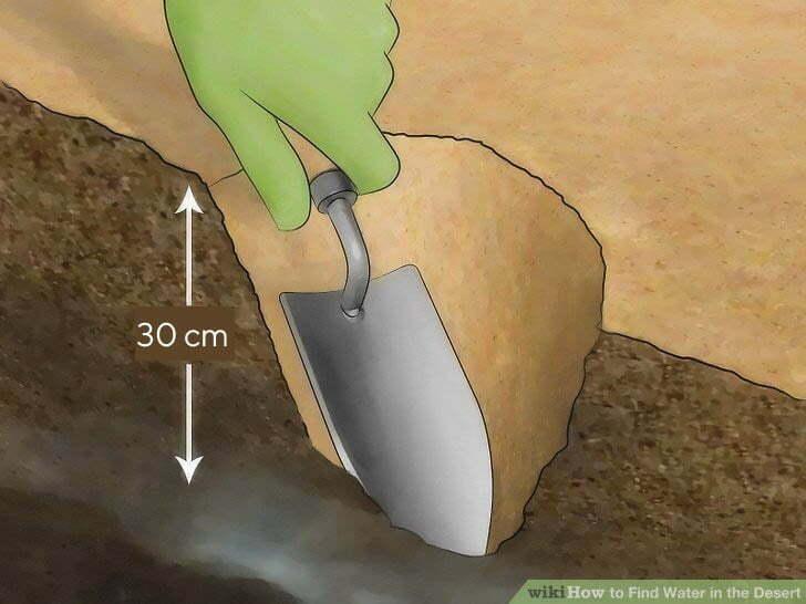 Szukaj wody sondując ziemię kopiąc płytkie dołki
