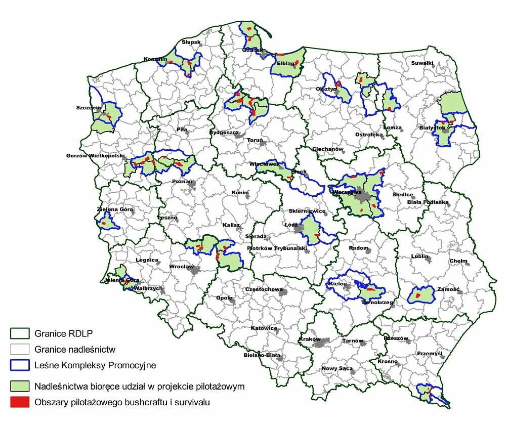 """Program pilotażowy - nocowanie """"na dziko"""" w polskich lasach"""